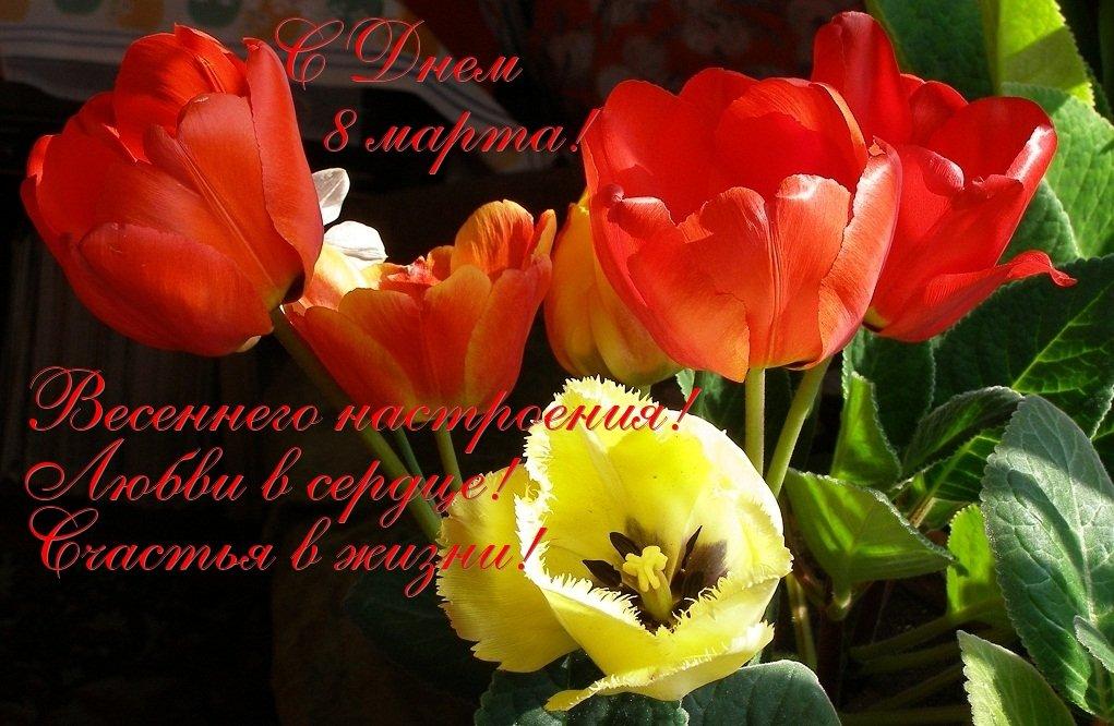Загрузить музыкальное поздравление с 8 марта, фото