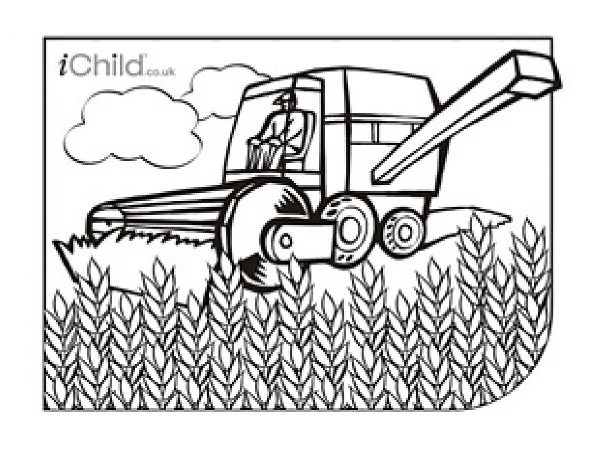 раскраска уборка урожая в поле можете