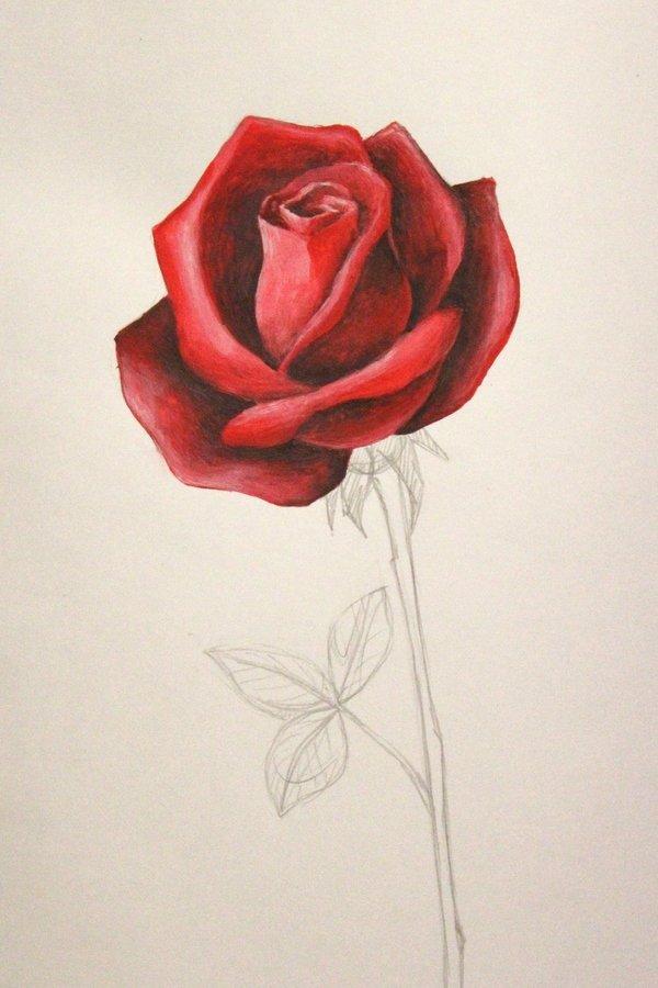 рисунок розы гуашью картинки что обратить