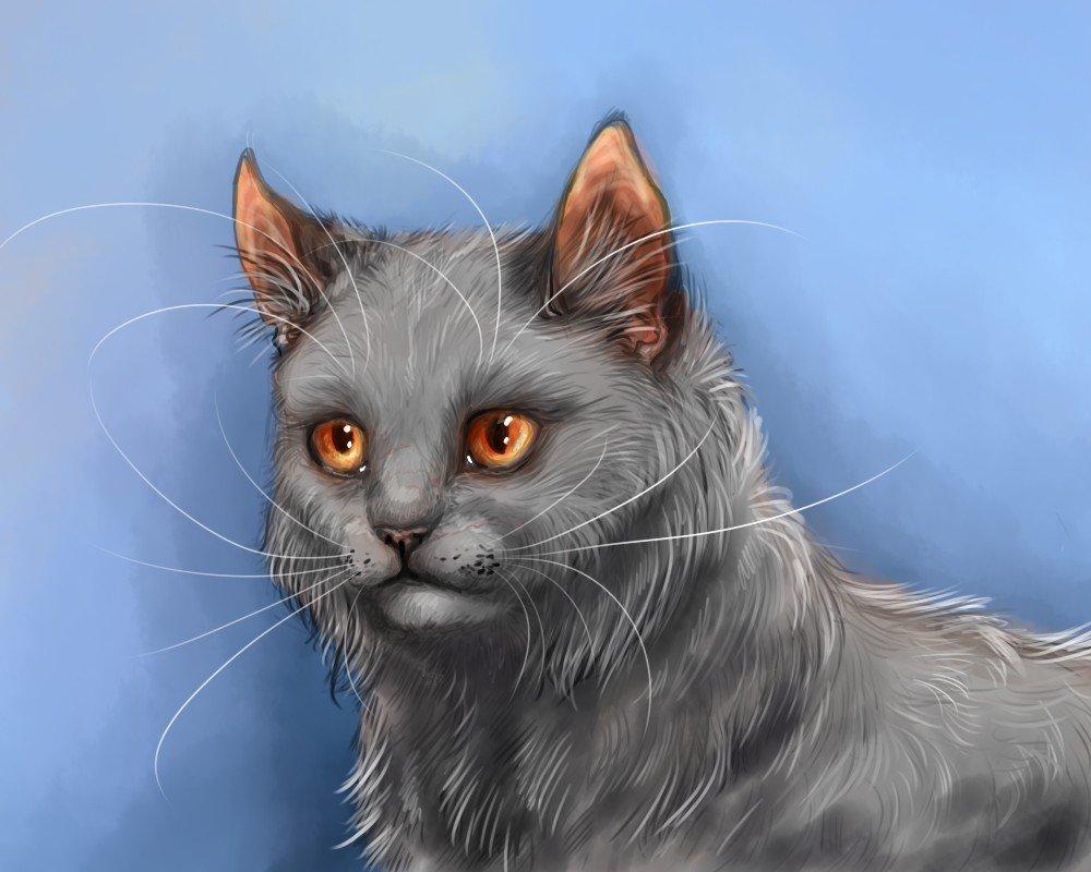 Картинки щербатая коты воители