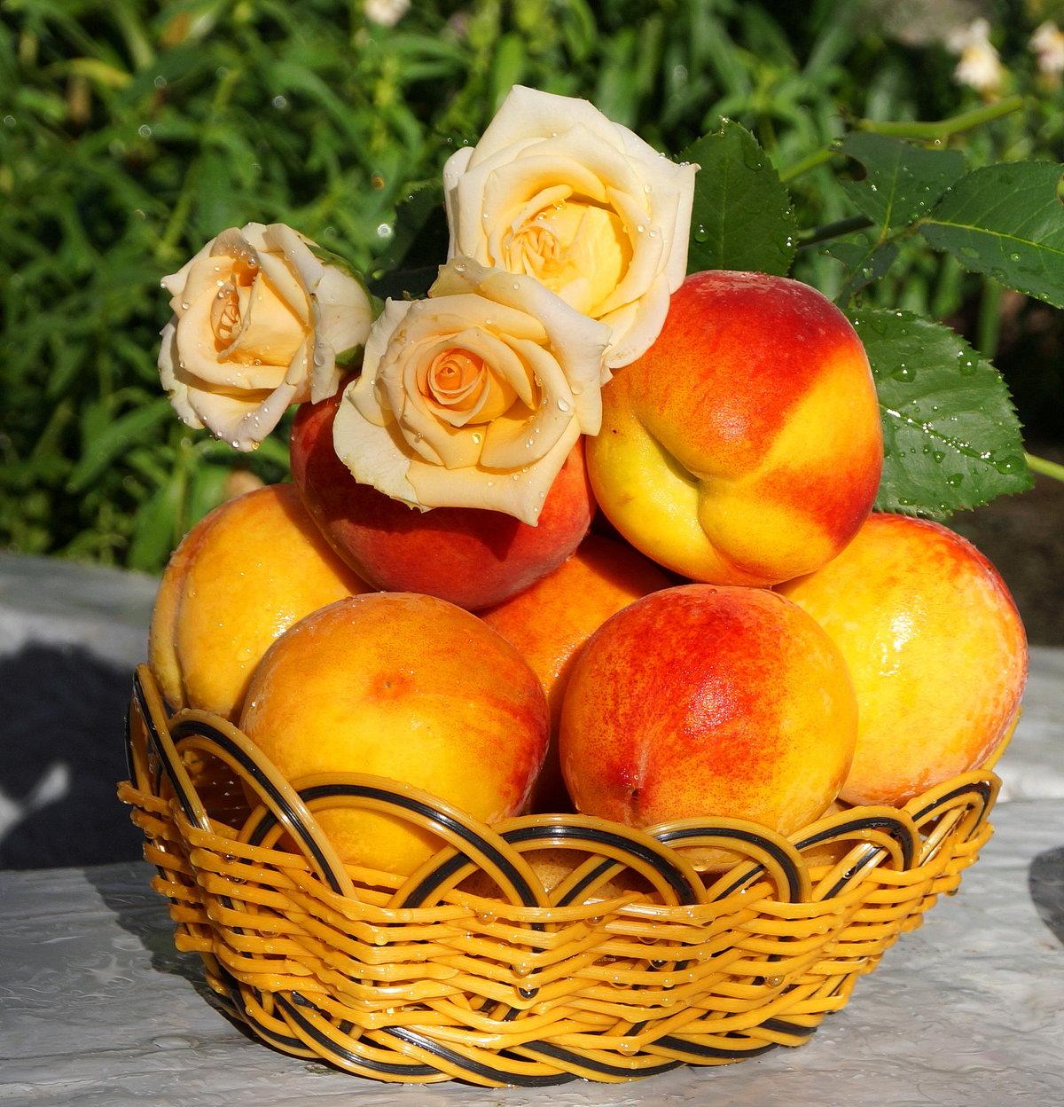 Открытки персикового настроения