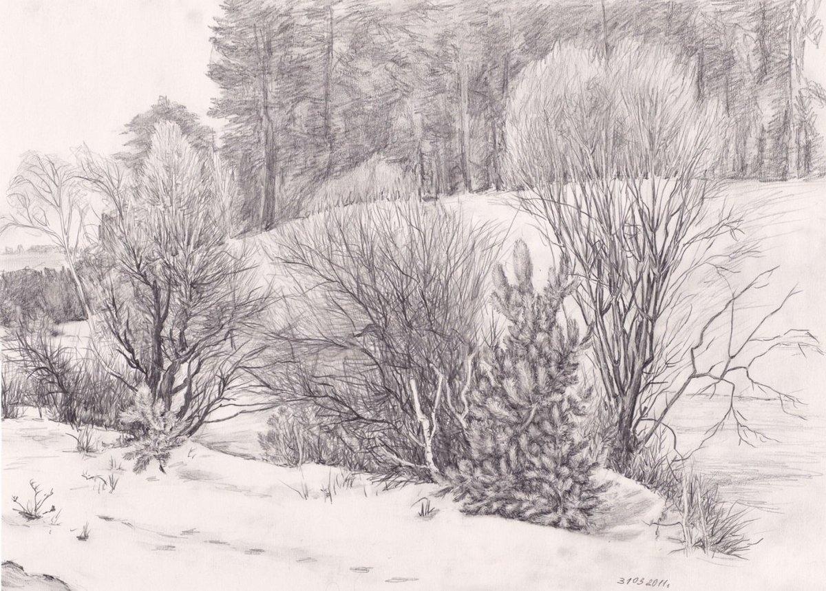 карандашные картинки зимы никиты