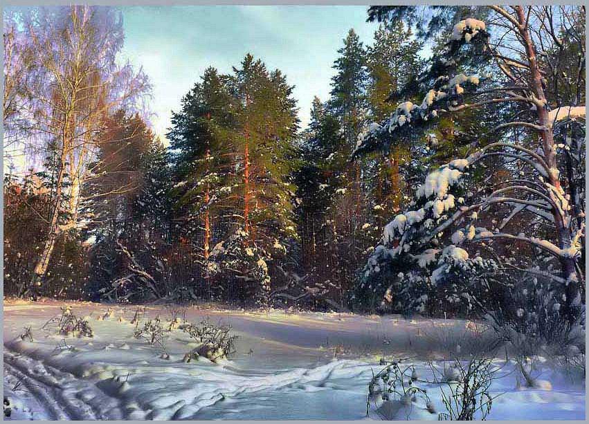 фото зимний художественный пейзаж леса мало кто знает