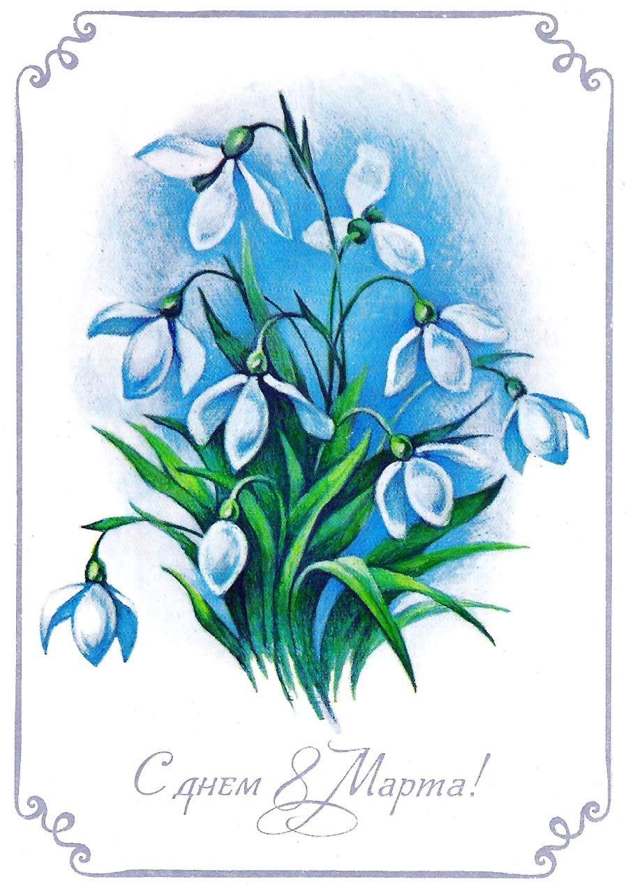 Нарисовать открытку с цветком