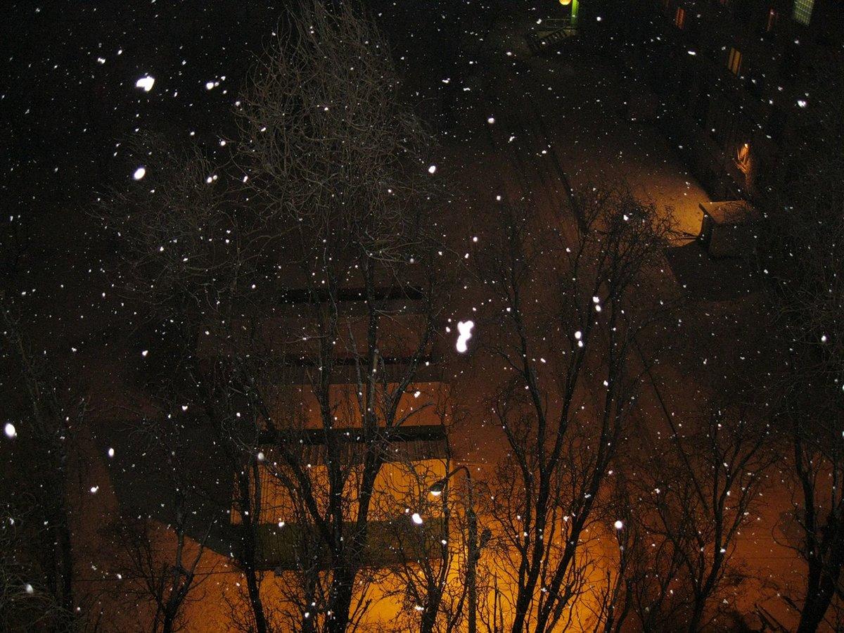 надежный зимняя ночь за окном фото сруб