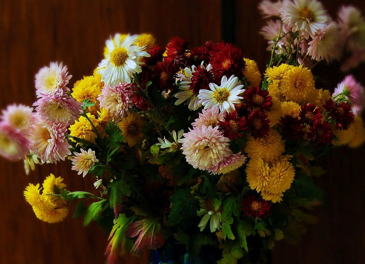 Анимашки, красивые картинки осенние цветы
