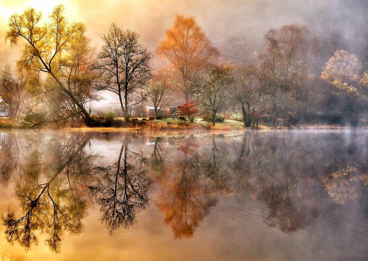 Открытки природы с отображением у воде, чувствах девушке
