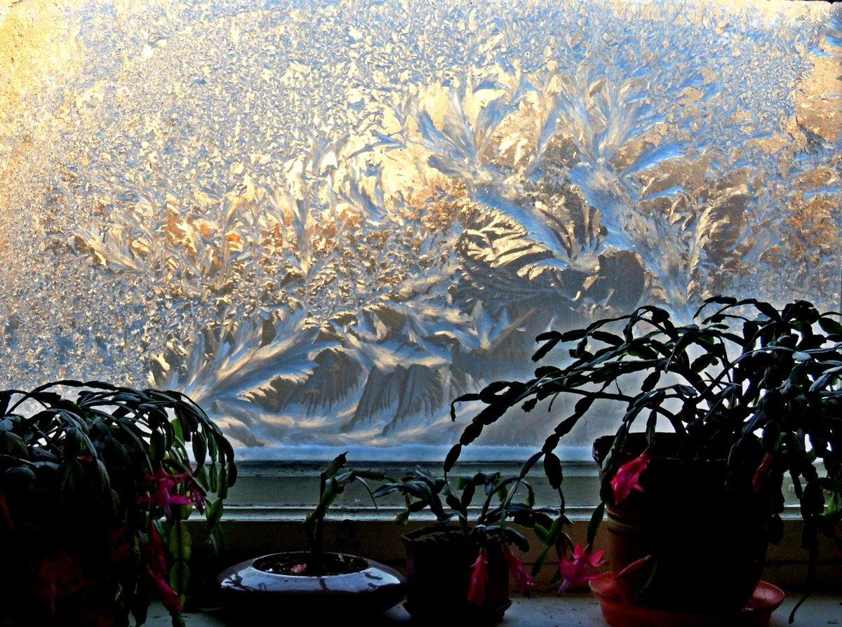 это мороз на окне картинки в домах является одним самых