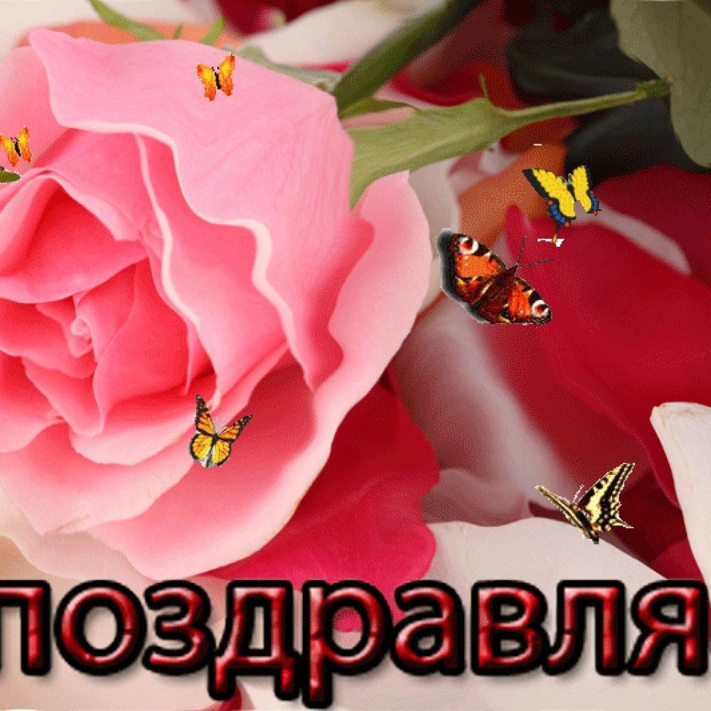 Одноклассники каталог открыток, юбилеем девушке прикольная