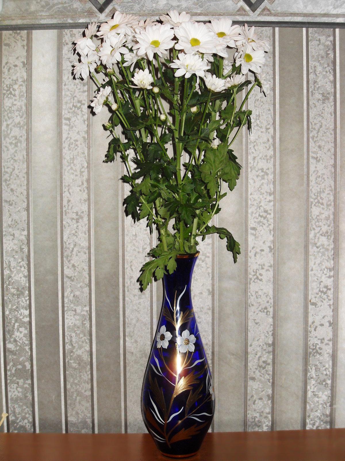 есть фотографии хризантем в вазе на окне семейство любит