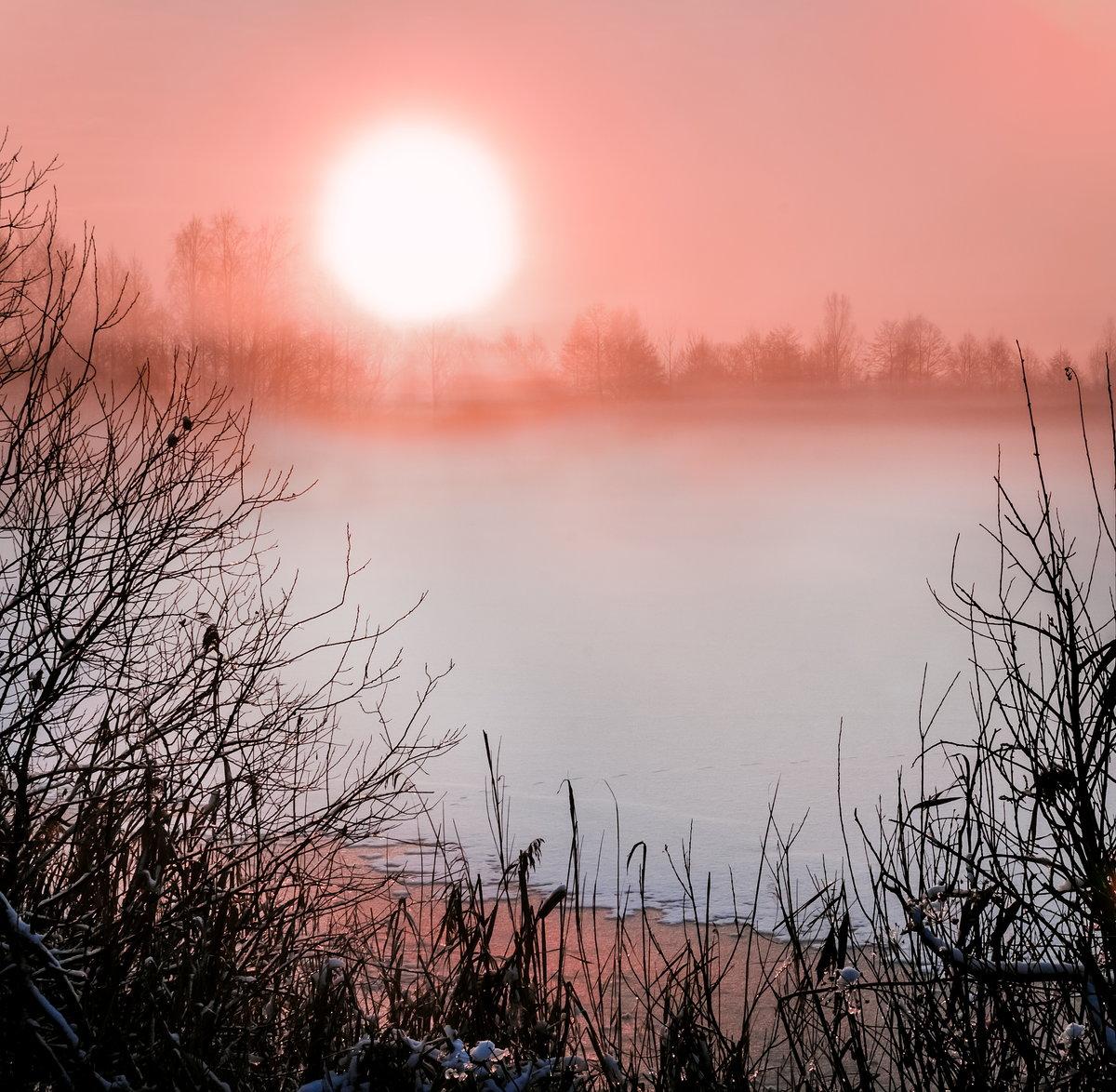 холодные рассветы картинки подробно
