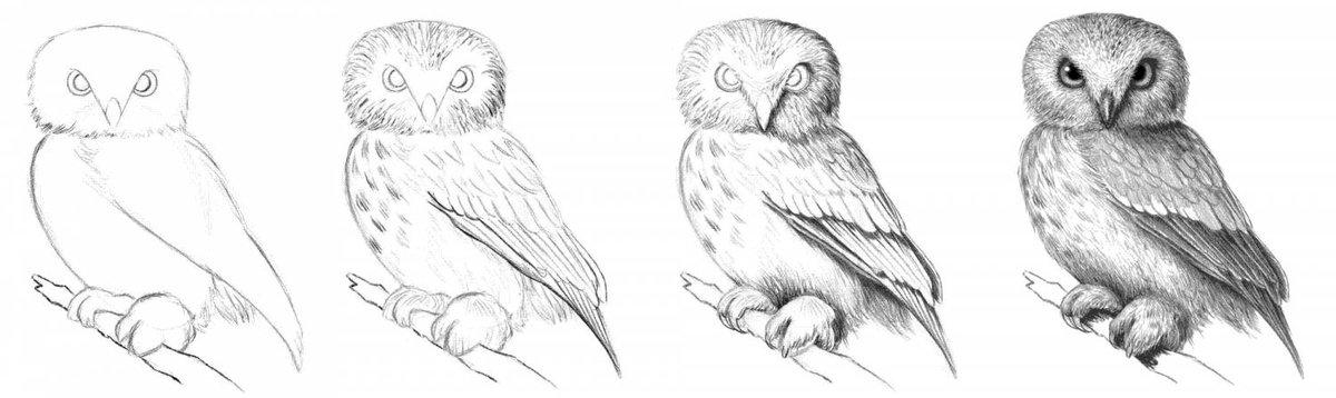 Рисунки карандашом сова поэтапно дворцов по-прежнему