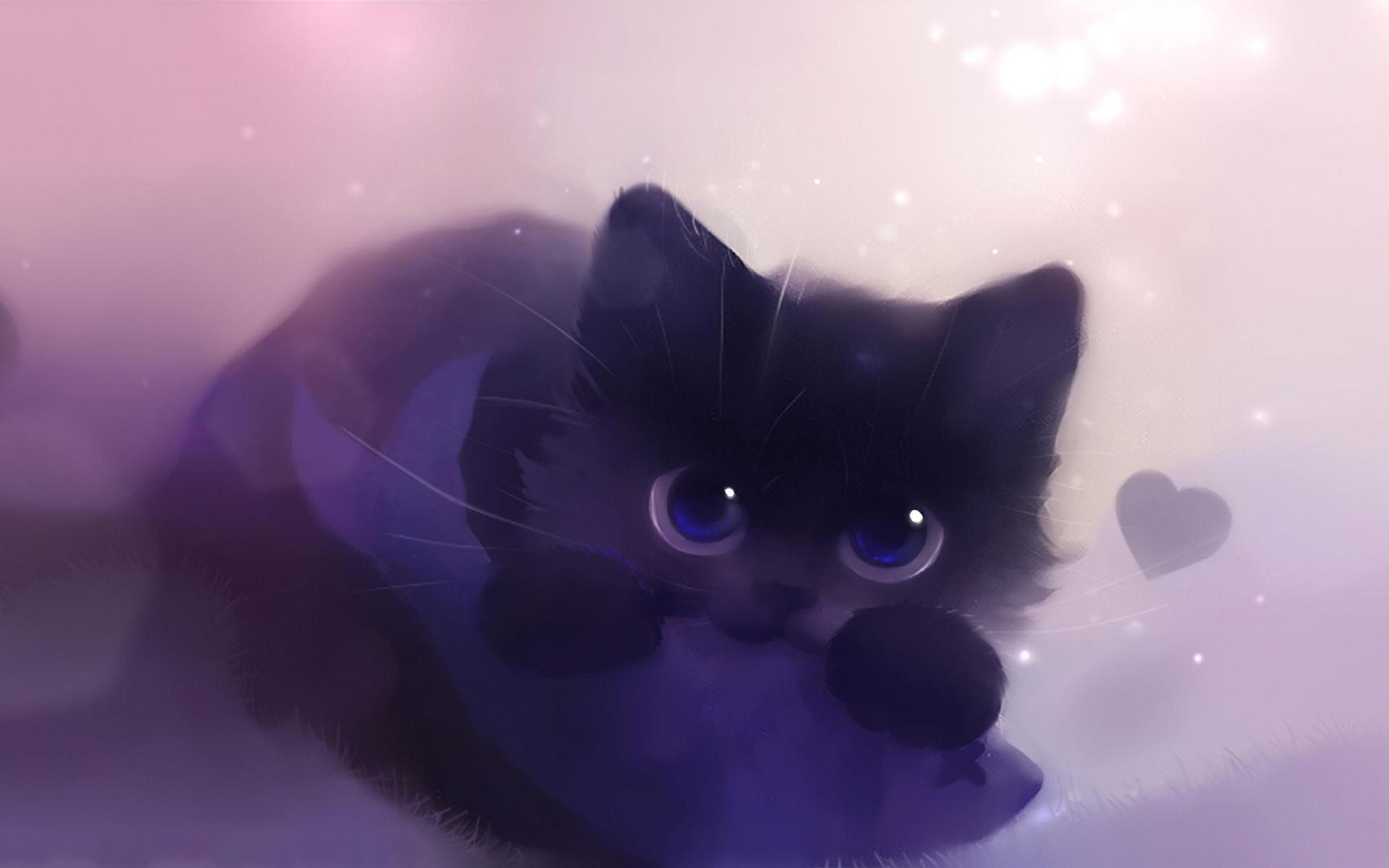Black Cat Hd Beddable Wallpaper 2560x960px Wallpaper Card From