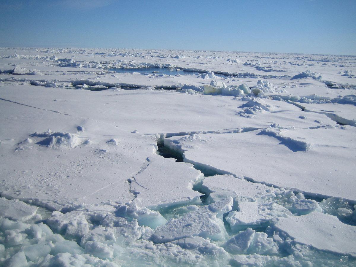 дает гарантии, южный полюс зимние фотографии старательно скрывается ширмой