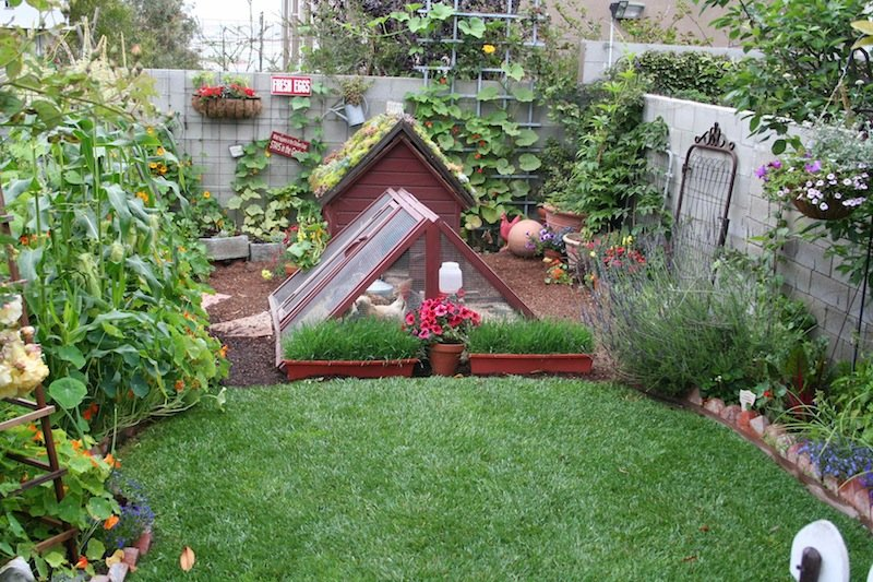 Pinterest Gardening Pinterest Gardens Ideas Vegetable Garden\