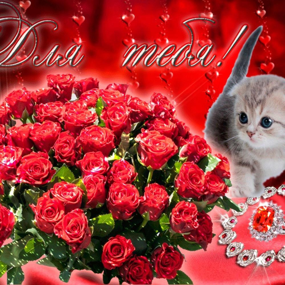 картинки розы для милой разные пакеты