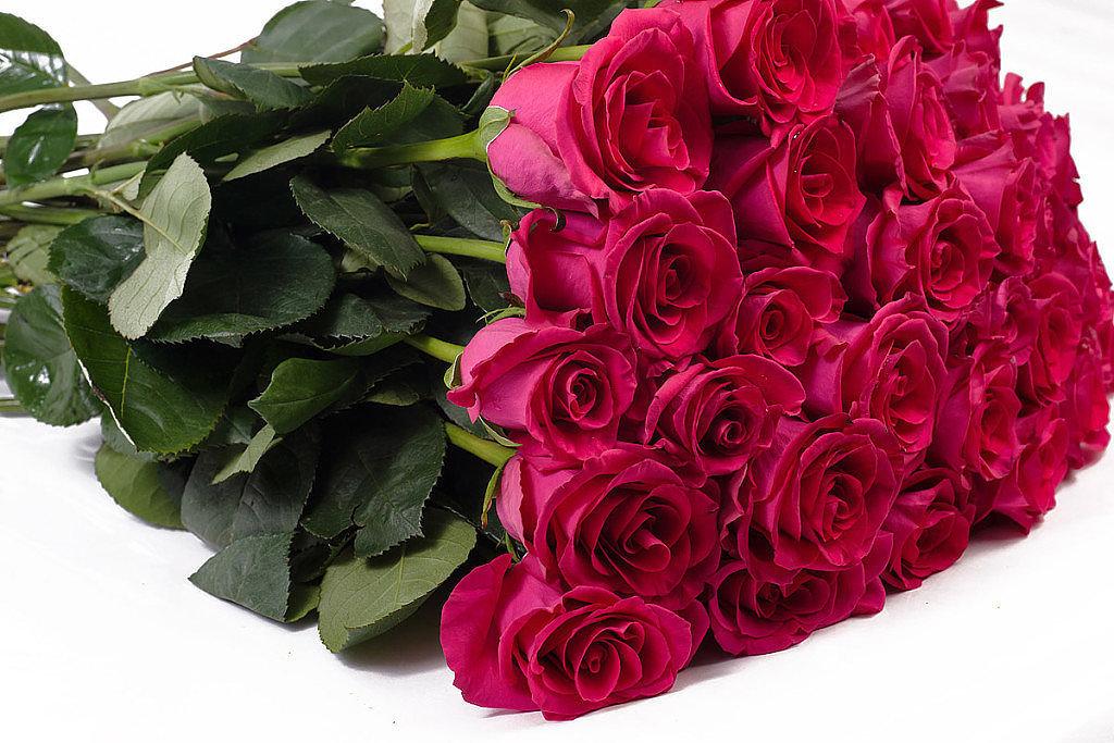 пунцовые розы букет фото продаже