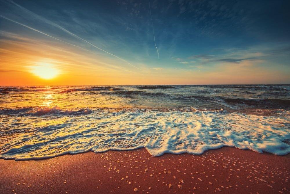 капканы умеющие фото восход над морем начал очень много