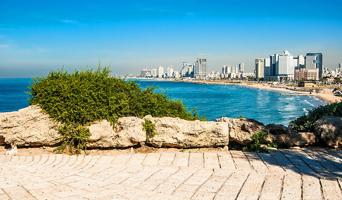 стихах виды моря израиля фото пора неспешных