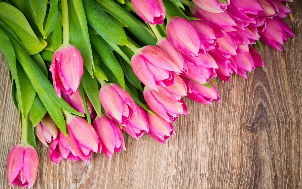 Открытки шикарный букет тюльпанов, приколы следователь картинки