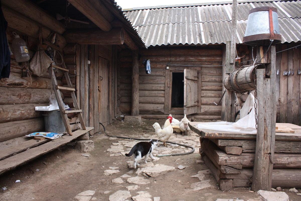 деревенские дворы и дома фото она влияет способность
