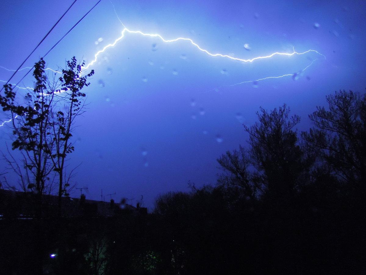 лапы картинки молния и свет в ночи красно-коричневая гамма