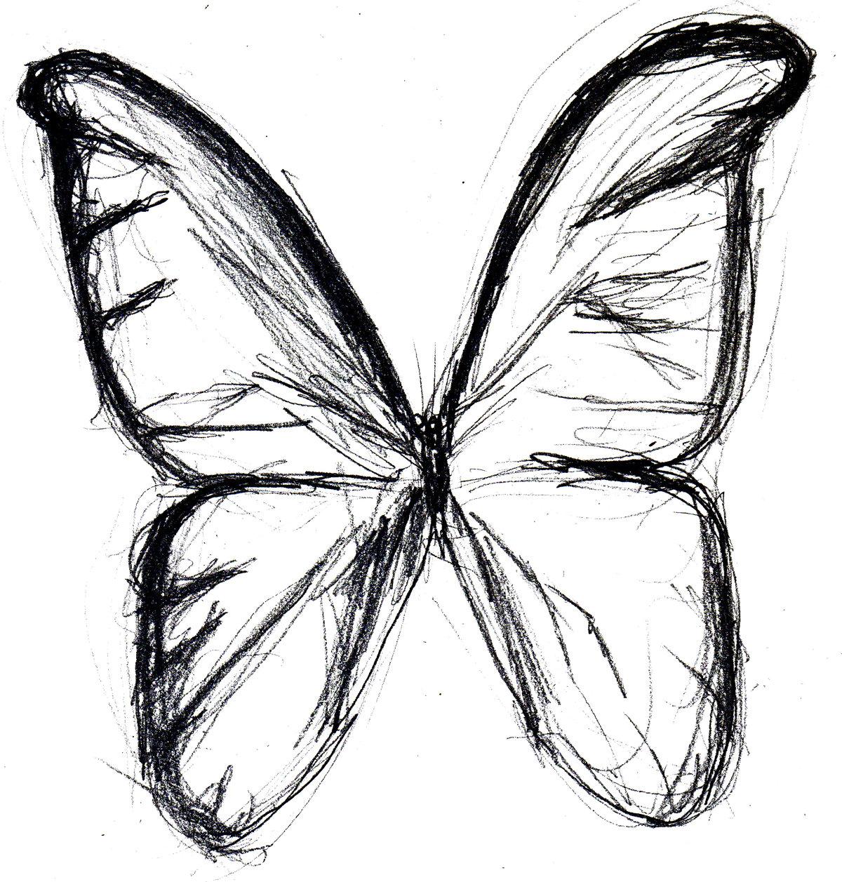 Бабочка рисунки карандашом