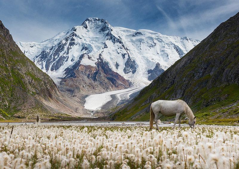 Киргизия картинки природа, февраля