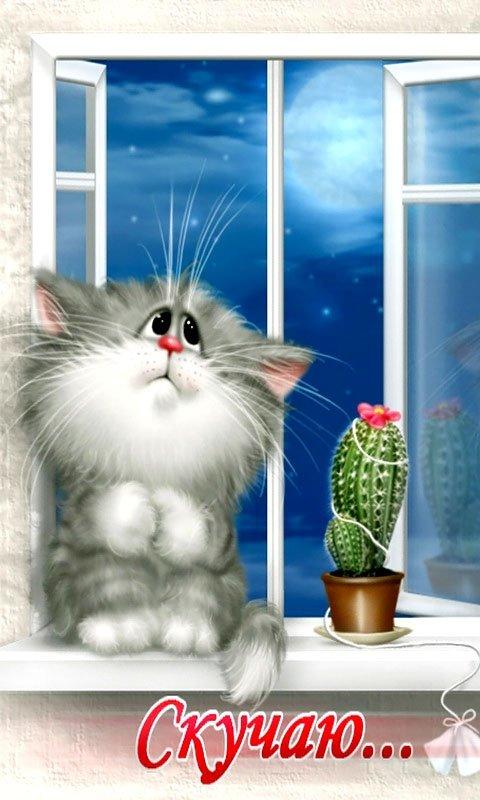 Кот скучает открытка, днем полиции