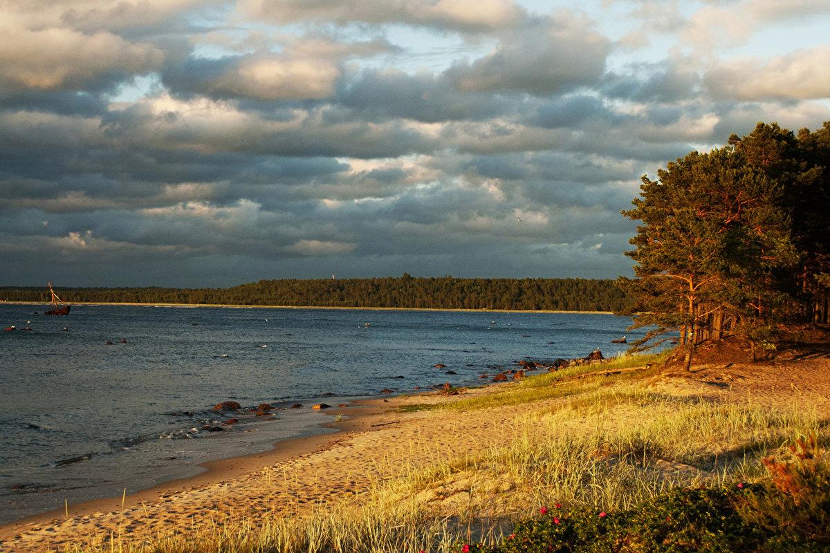 года эстония природа пейзажи фото берет связан своими