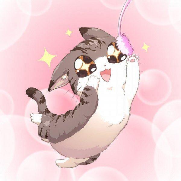 Картинки с котиками аниме с прикольными, мая
