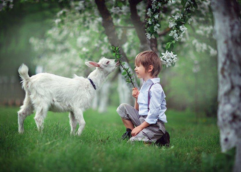 автоматическую коза на фотосессию интерскол