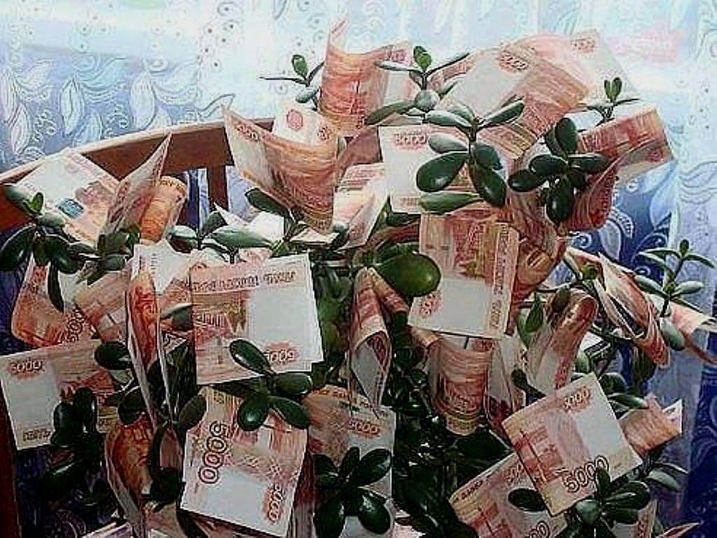 Букет цветов и деньги открытка