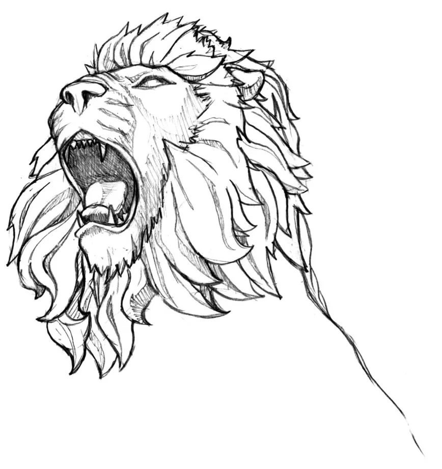 Lion Drawing Tattoo For Lion Sketch Tattoo Tattoo Maze Card