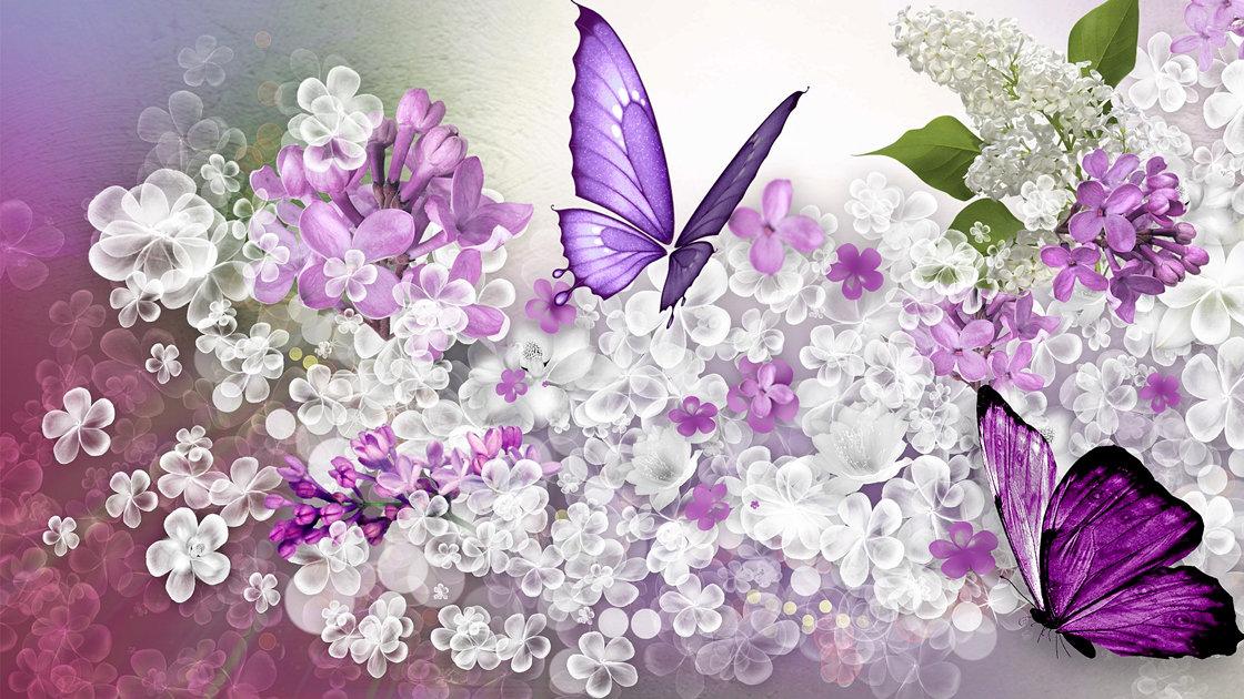 Картинки сиреневые цветы с бабочками, рисунки петухами