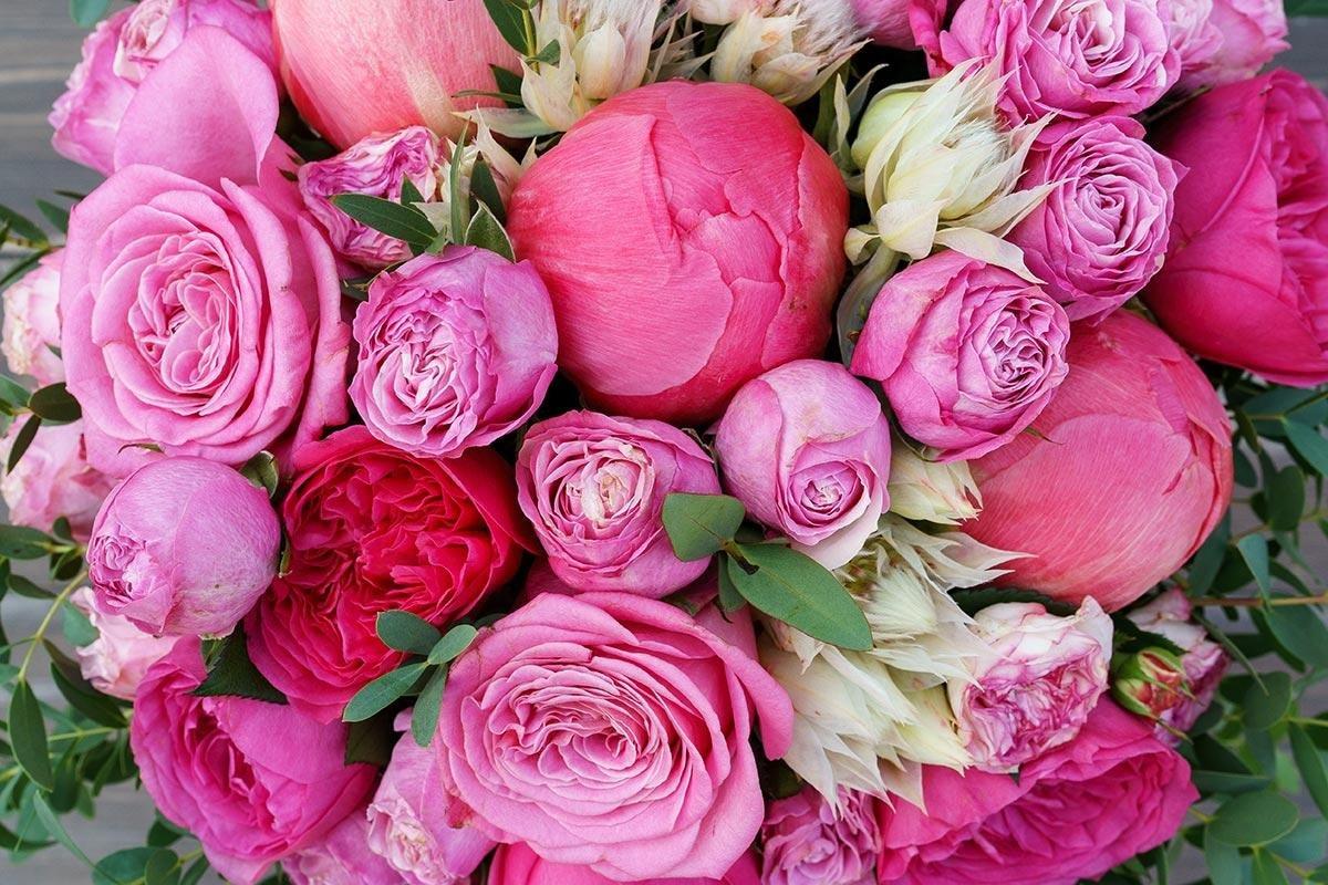 цветы картинки букет пионовидные розы было