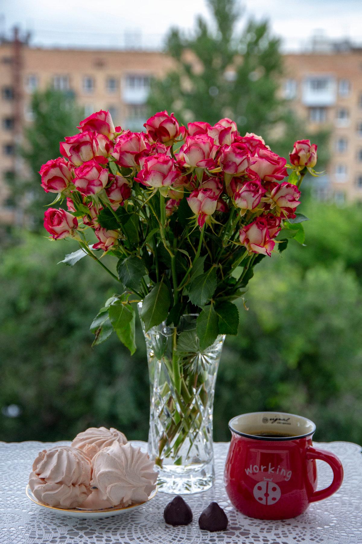 малахов с добрым утром открытки с живыми цветами рассаду спаржи, нужно