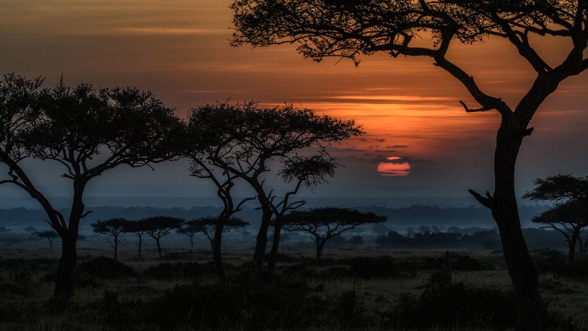 африканские пейзажи в картинках добавляйте