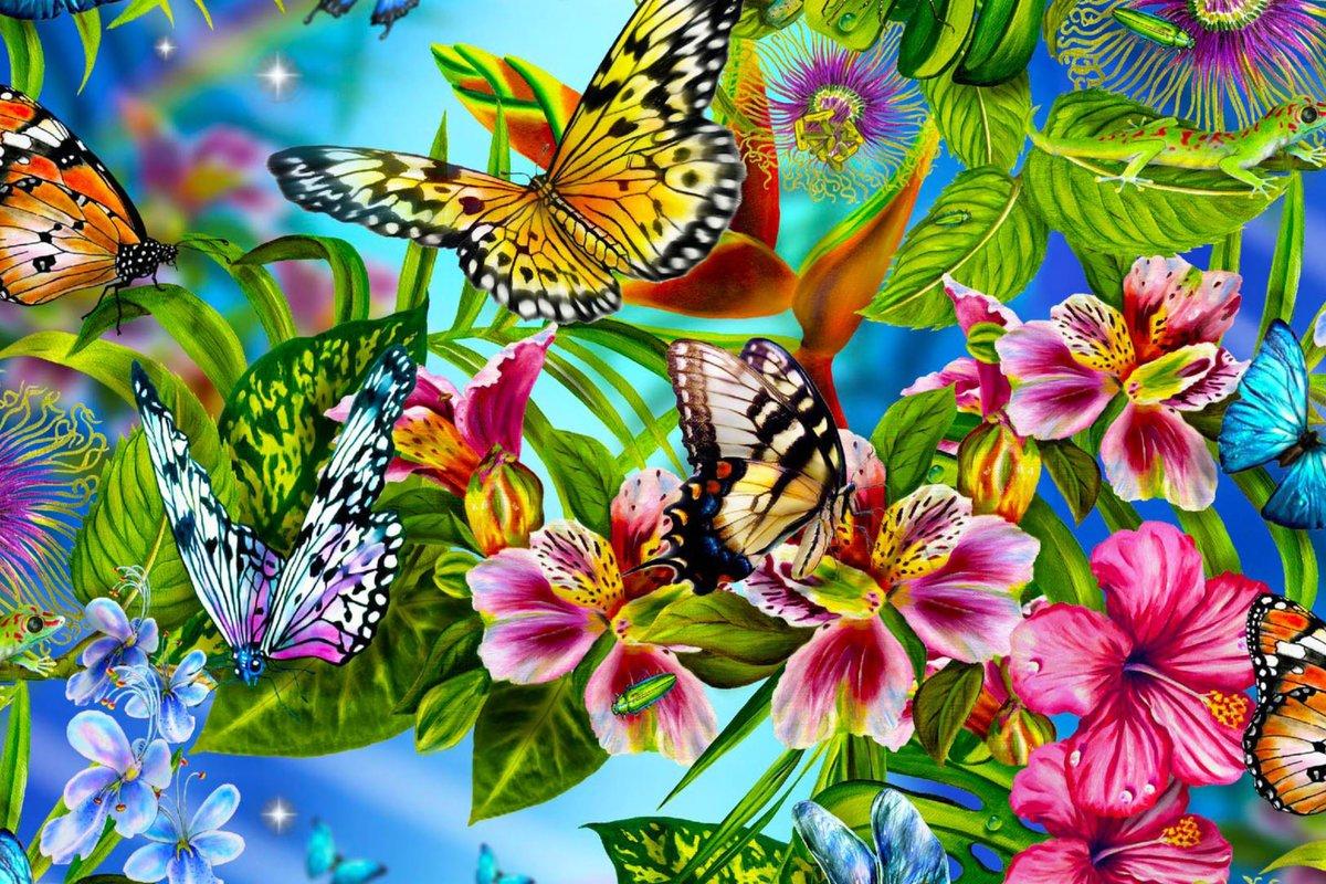 Днем, красочные картинки открытки