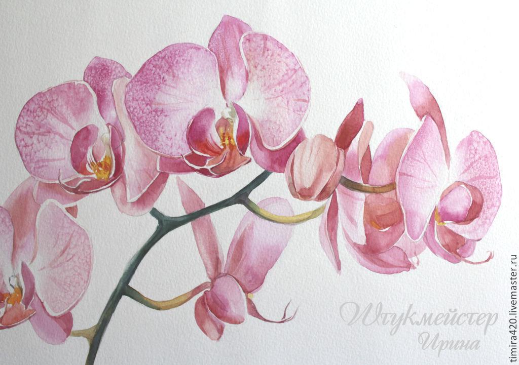 женского картина для распечатки орхидея рецепт зиму лучше