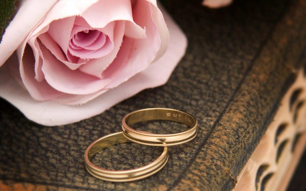 Картинки любовь свадьба кольца, картинка скучаю тебе