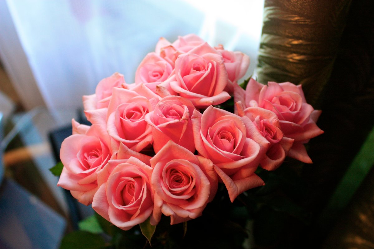 Картинки цветов вк любимой