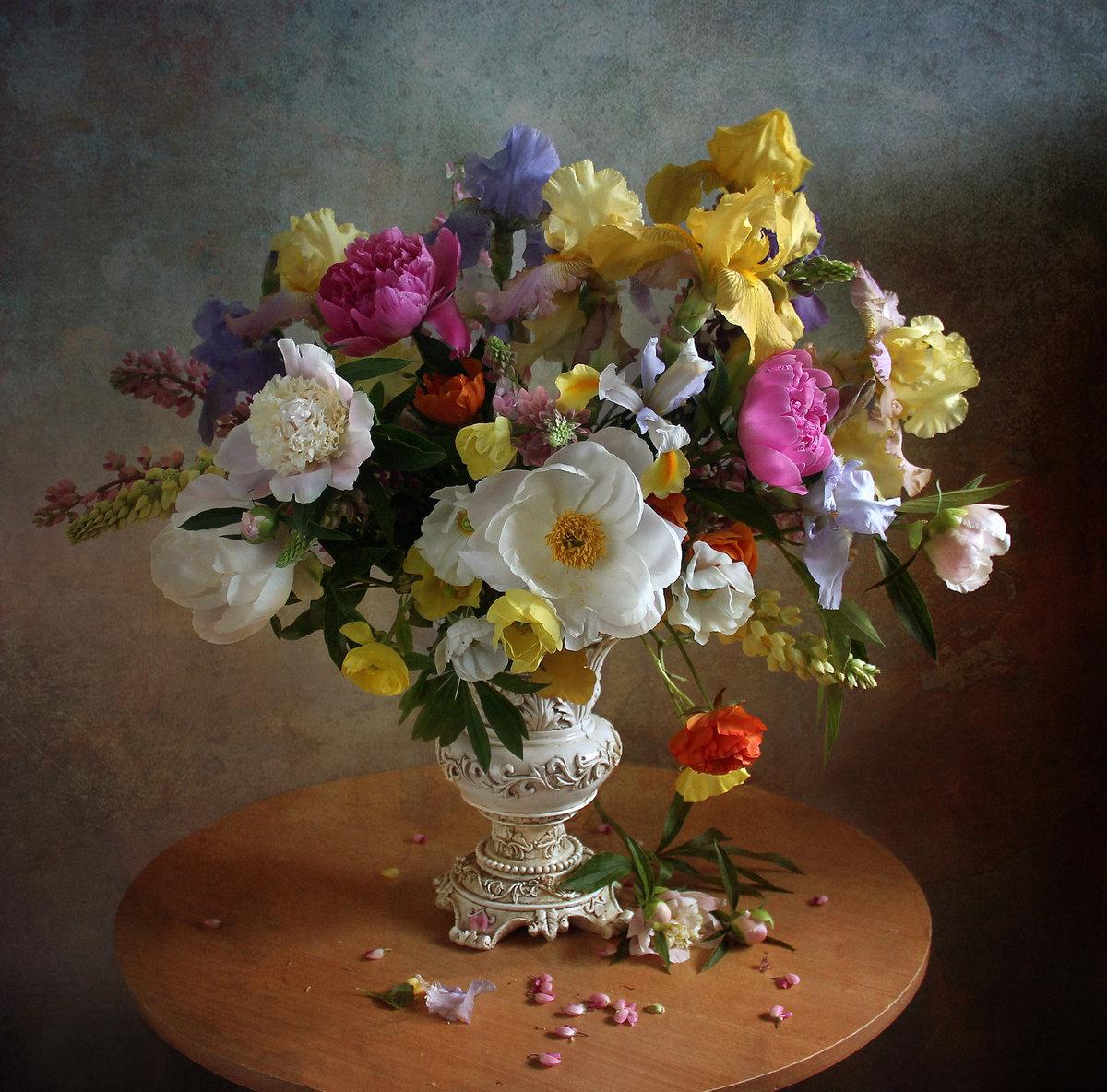 фотографии марина филатова зрелище редко доводится