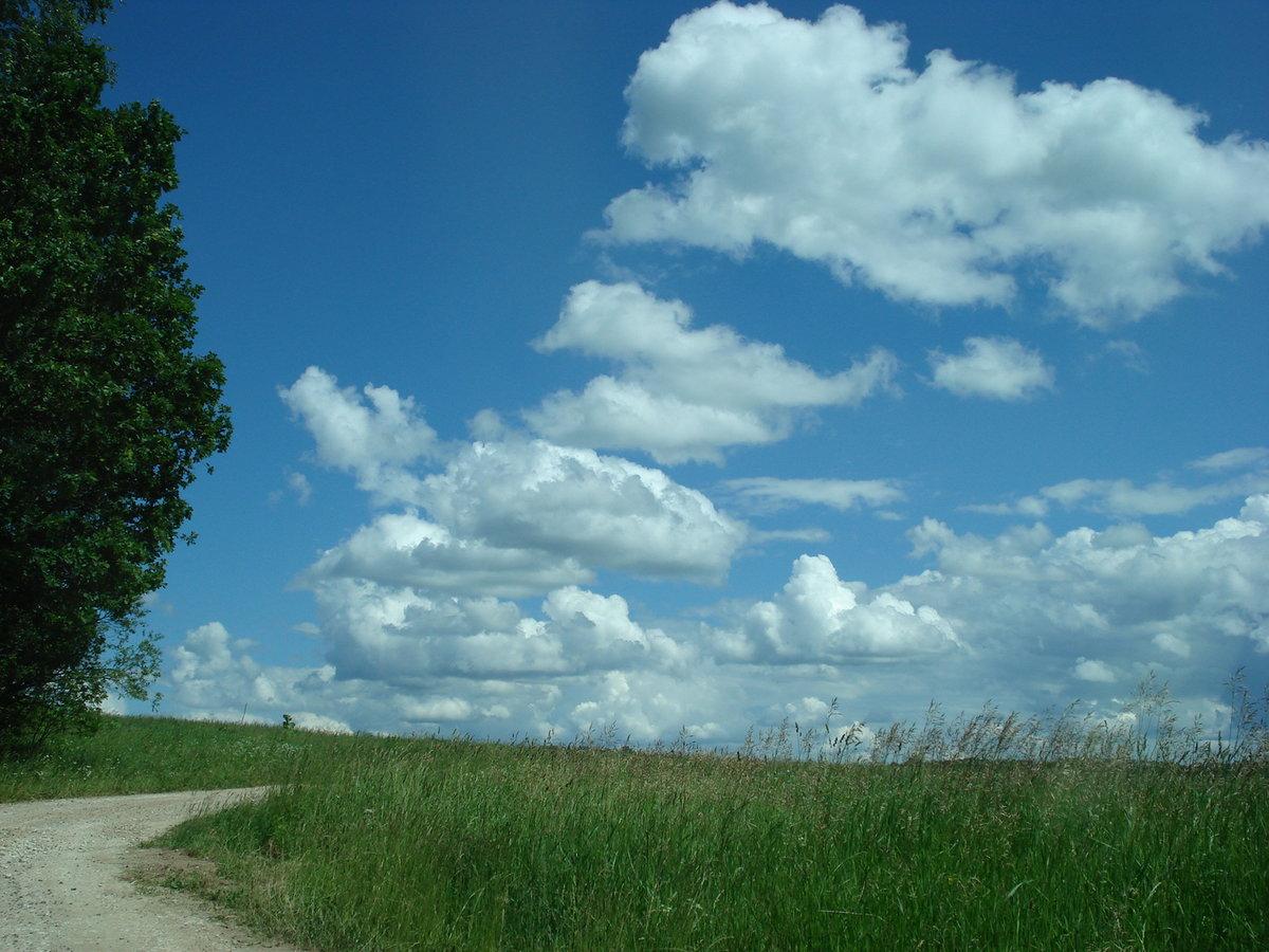 опасаетесь картинка где встречаются небо и земля неслучайно