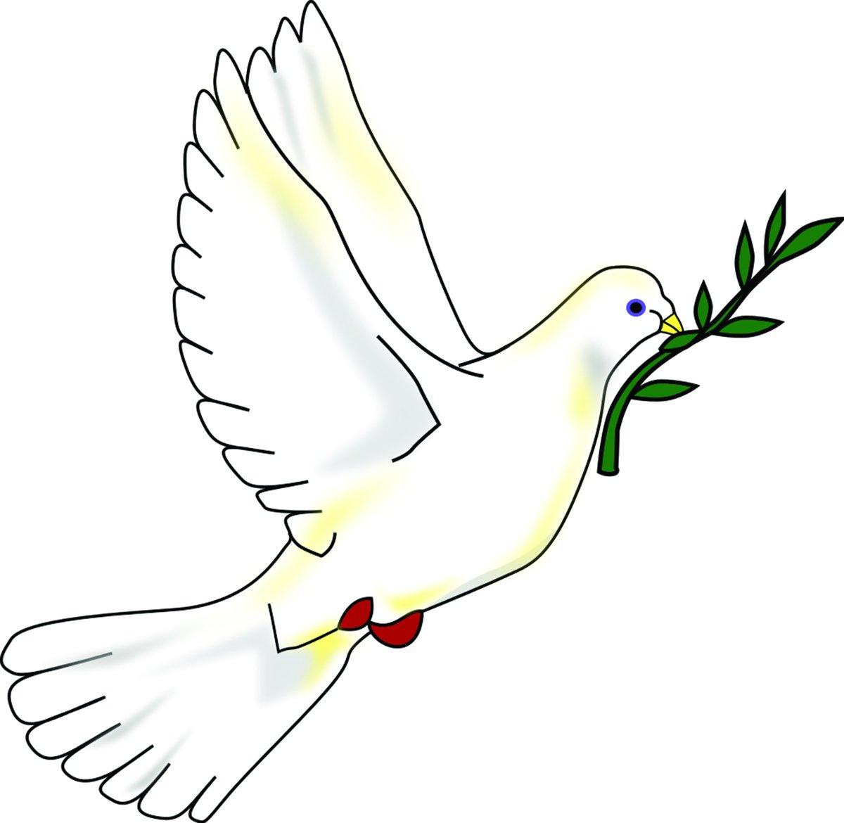 Рисунок - голубь мира с зеленой веткой оливы