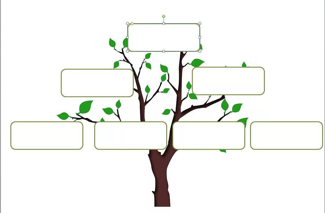 Моя родословная картинки дерево схема