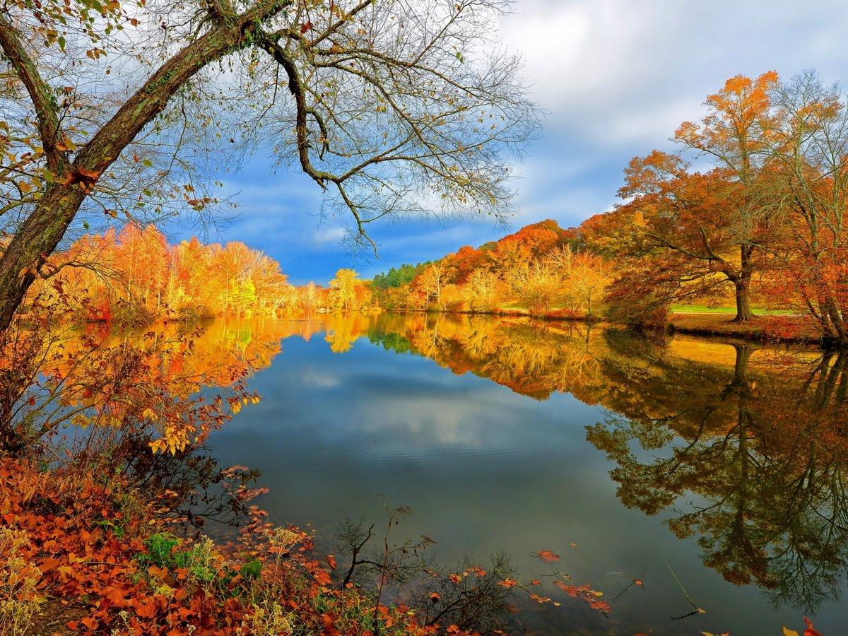 Осенняя красота в картинках