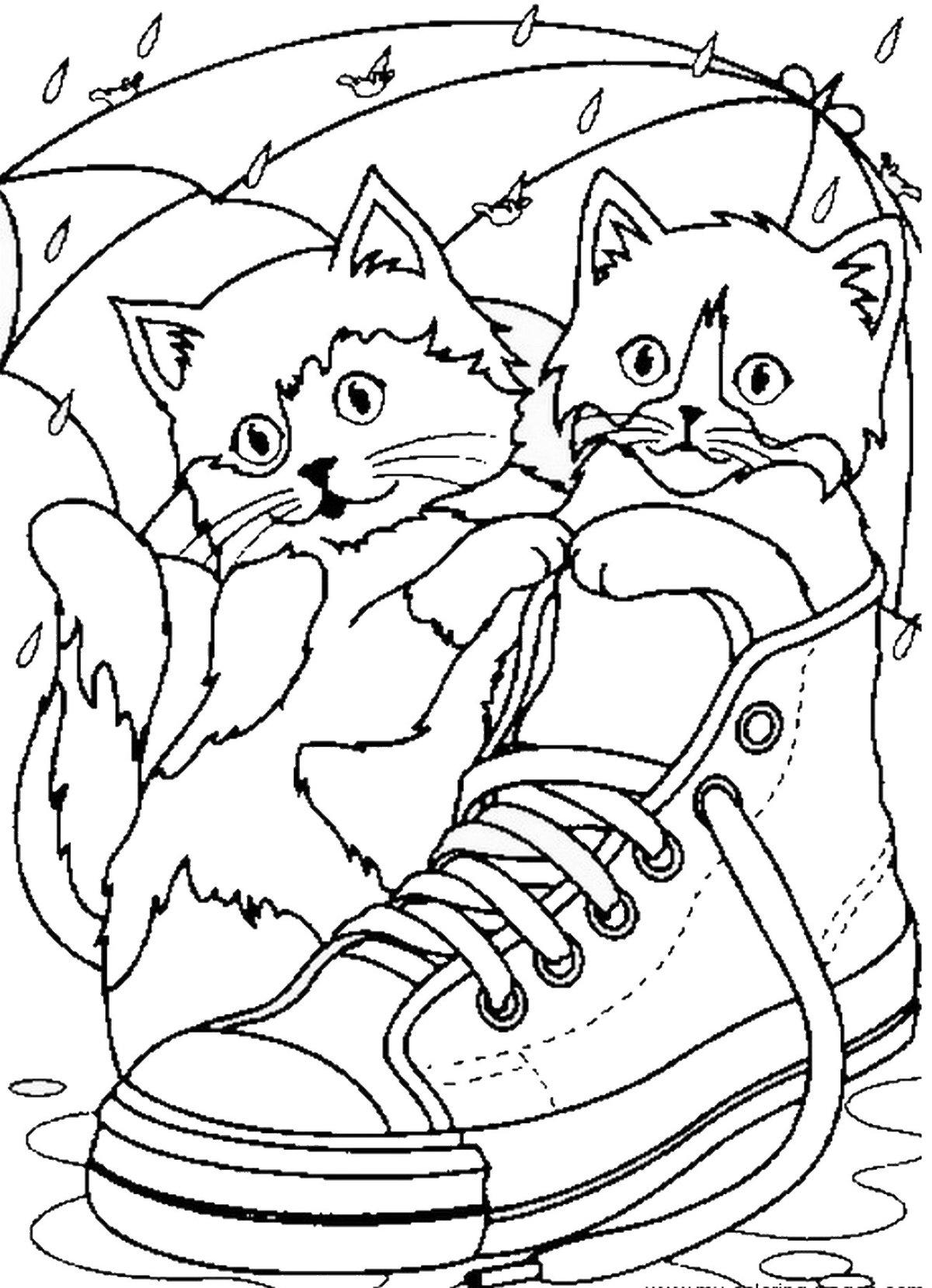 Картинки с котятами смешные раскраски