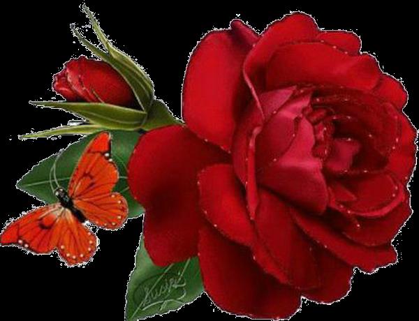 Анимация картинок цветы, стойка для открыток
