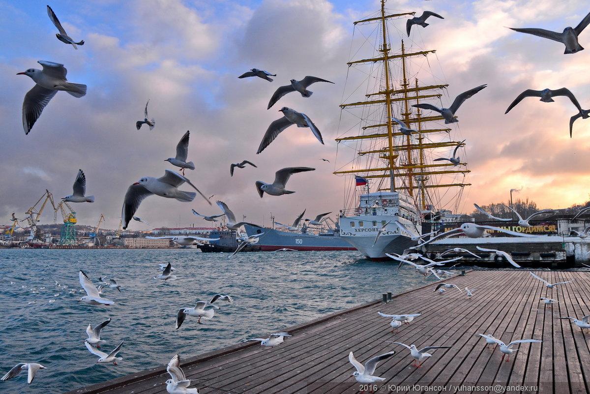 того, картинки море парус чайки время переезда